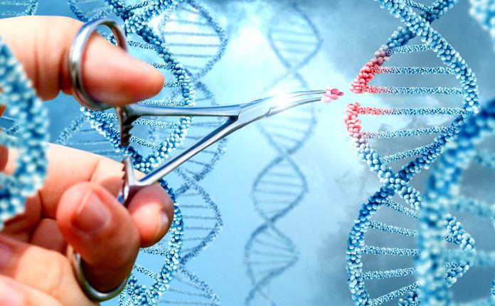 Изучение генов может помочь в понимании причин псориаза