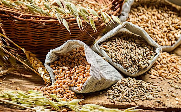 Зерновые – один из кислотообразующих продуктов