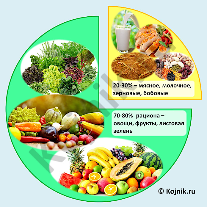 Соотношение продуктов в диете Пегано
