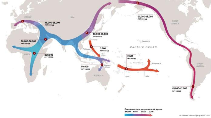 Схема миграции человека из Африки